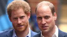 Prince William And Harry Are Allegedly Feuding, Claims Royal Filmmaker