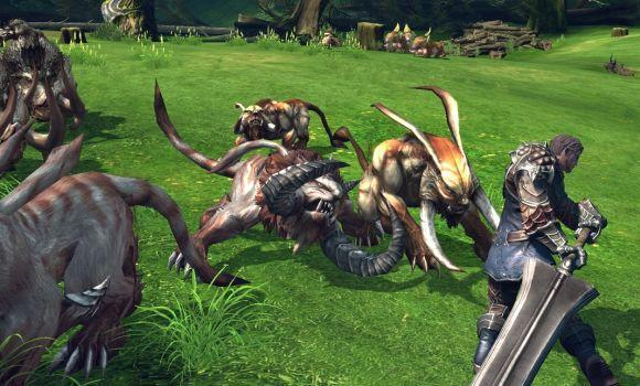 Everything you ever wanted to know about TERA's testing but were afraid to ask