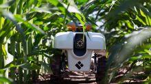 Los robots que quieren controlar la agricultura