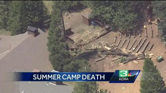 1 dead after tree falls at camp near Yosemite
