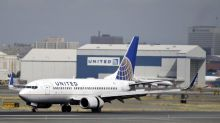 Giant rabbit dies aboard United Airlines flight