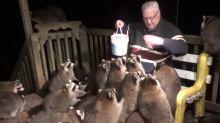 家門出現一大群「肥嘟嘟蒙面客」  打劫大軍:食物交出來!