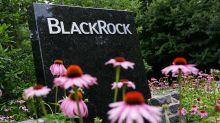 BlackRock Beats Q3 Views As Investors Keep Pouring Money Into ETFs