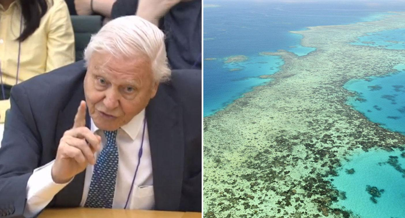 'Major problems': David Attenborough slams Australia over climate change