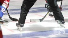 Hockey - Ligue Magnus - Ligue Magnus: Angers s'impose à Chamonix et confirme son bel état de forme