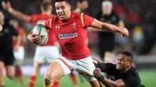 Webb to miss out on Wales rugby selection