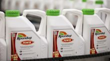Bayer Gains After Judge Favors Cutting Award in Roundup Case