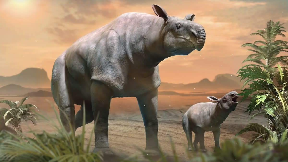 Giant Rhino Found in China Was Largest Land Mammal Ever - Yahoo Lifestyle