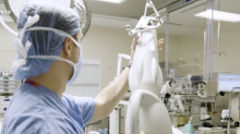 Robot-assisted technology is helping surgeons during knee replacements