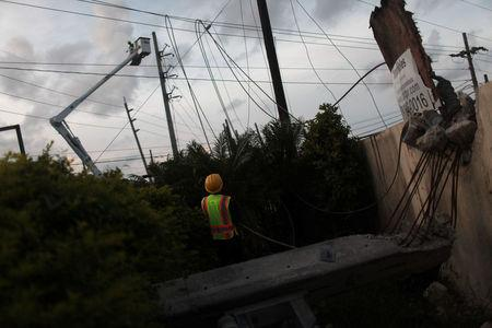 Workers of Puerto Rico's Electric Power Authority (PREPA) repair part of the electrical grid after Hurricane Maria hit the area in September, in Manati
