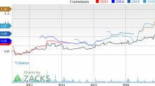 How PetMed Express (PETS) Stock Stands Out in a Strong Industry