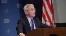 Dr. Fauci Predicts Surge in COVID Deaths