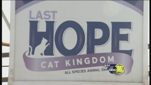 Last Hope Cat Kingdom in Atwater to continue operations
