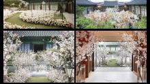宋仲基 宋慧喬 結婚場地原來這麼美!韓星最愛結婚場地大公開!