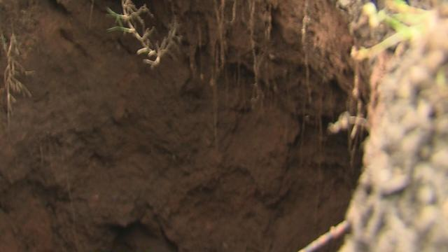 Wagoner woman deals with sinkhole in her driveway