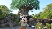 Disney creators break down Animal Kingdom's new holiday nighttime show