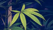 UK: Tilray Expects Medical Cannabis Demand to Rise