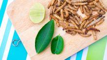 Insekten essen: Ist das wirklich das Heilmittel für den Klimawandel?
