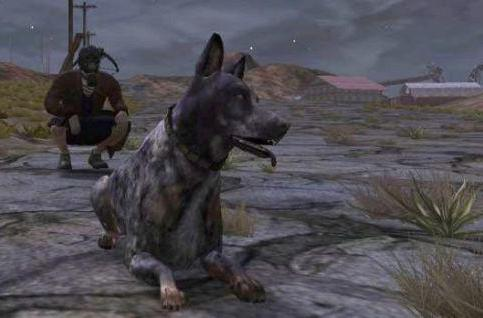 The Daily Grind: What vanity pet would you like to see in your favorite MMO?