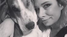 This woman's dog may have detected her cancer — and saved her life