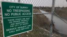 Farms, homes, roads, wildlife in Surrey, B.C., under threat from rising water levels