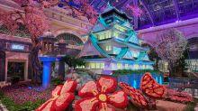 Bellagio's Conservatory & Botanical Gardens Celebrates Japan With Vibrant Spring Display Through June 15