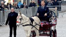 Britain's Got Talent 2017: Judges arrive on a donkey to first auditions in Blackpool