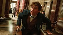 Fantastic Beasts wins the first Oscar for Harry Potter