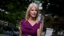 Kellyanne Conway is being paid $15,000 a month by the GOP following her White House exit: filings