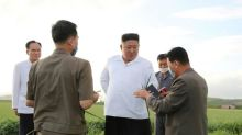Typhoon causes little damage in North Korea: Kim