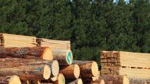 Should You Investigate Acadian Timber Corp. (TSE:ADN) At CA$15.06?
