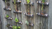 Ideas originales para crear un jardín vertical