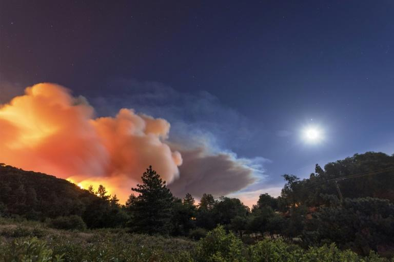 Record low moisture in the vegetation, low humidity and high temperatures are fuelling the Apple Fire (AFP Photo/DAVID MCNEW)