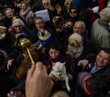 Blessing of the animals on St. Anthony's Day