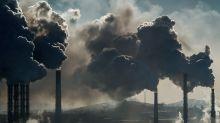 Microsoft, Nike e Natura criam grupo global para cortar emissões