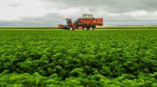 OCDE aconselha direcionar subsídios da agricultura para o clima e o impacto social
