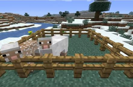 Minecraft 1.1 update adds languages, eggs and regenerative sheep