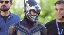 Evangeline Lilly wears full Ant-Man and the Wasp outfit