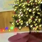 Police release video of officers decorating offensive Christmas tree