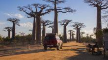 【馬達加斯加】行程與旅遊心得分享