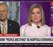 CNN Anchor Shreds Trump's Trade Adviser Over Coronavirus Response: 'You're Wasting Everyone's Time!'