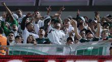 Palmeiras vê desabar número de sócios-torcedores