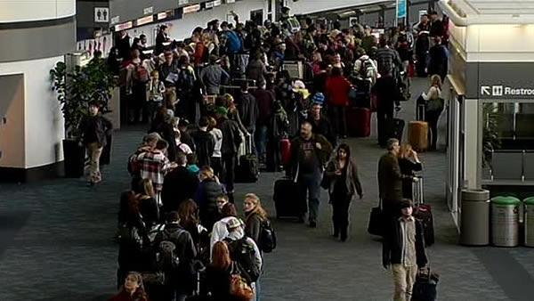 Storm causes flight delays, cancellations