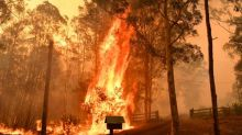 Australia fires: blazes 'too big to put out' as 140 bushfires rage in NSW and Queensland