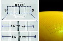 Korean researchers create stretchy transistors made of graphene