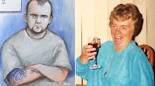 Burglar, 23, admits murder and sex assault of pensioner, 89, found battered in her home