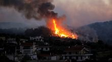 Greek firefighters battle forest blaze for second day near seaside village