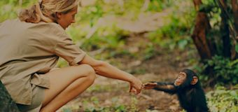 Jane Goodall is a bit of a Bigfoot truther