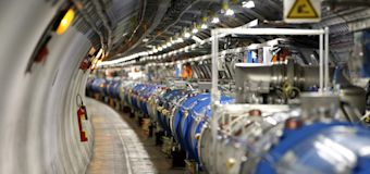 Weasel Shuts Down Large Hadron Collider
