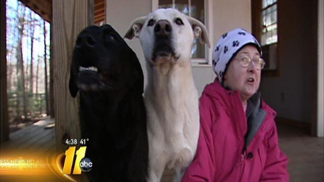 Cancer-stricken caretaker needs foster homes for pets